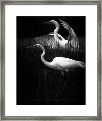 Let's Just Wing It Framed Print by Robert McCubbin