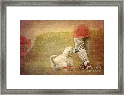Let's Play Framed Print by Jayne Carney
