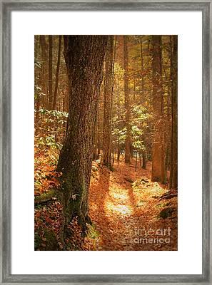 Let's Take A Walk Framed Print by Geraldine DeBoer