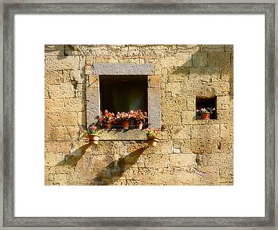 Lets Watch The Flowers Grow.. Framed Print by A Rey