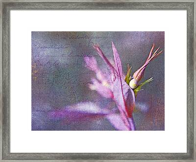 Lettres D'amour Framed Print by Theresa Tahara