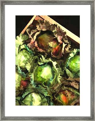 Lettuce Entertain You Framed Print by Elaine Plesser