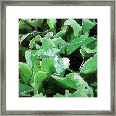 Lettuce Go Green - Food Art Framed Print by Linda Apple
