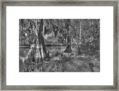Lettuce Lake Framed Print