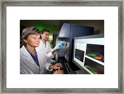 Leukaemia Phytochemicals Research Framed Print by Peggy Greb/us Department Of Agriculture