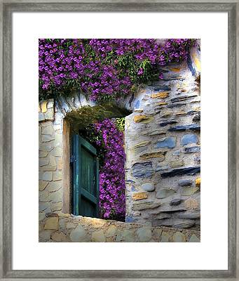 Levanto Bougainvilla Framed Print