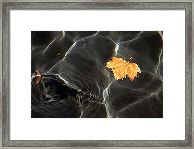 Framed Print featuring the photograph Levitas by Sandro Rossi