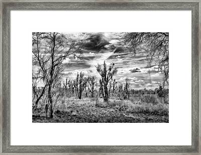 Framed Print featuring the photograph Levy Lake by Howard Salmon