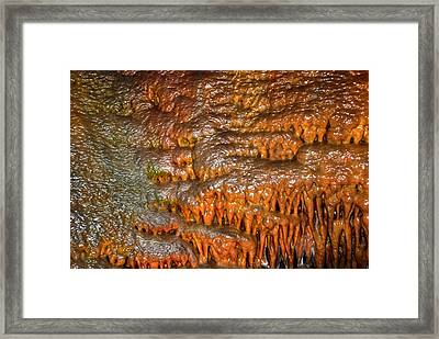 Lewis And Clark 1 Framed Print by T C Brown