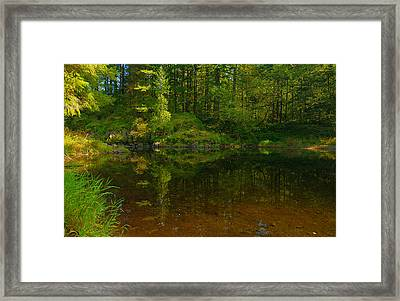 Lewis River Grotto 3 Framed Print