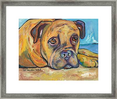 Lexie Framed Print by Pat Saunders-White