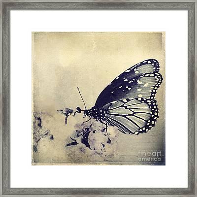 Librada Framed Print by Trish Mistric