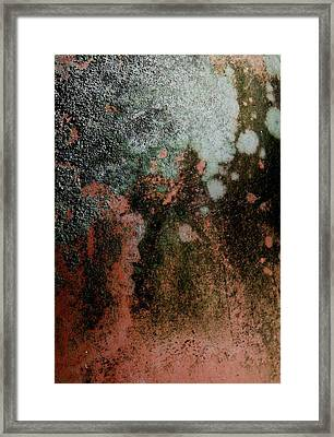Lichen Abstract 2 Framed Print by Denise Clark