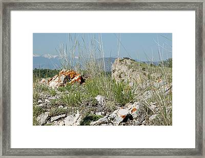 Lichen Covered Rocks At Missouri Headwaters State Park Montana Framed Print