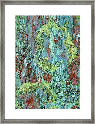 Framed Print featuring the photograph Lichen On Fence by Michele Penner