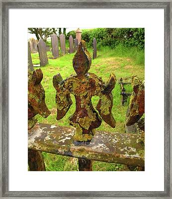 Lichen On Iron Railings In Clean Air Framed Print by Cordelia Molloy