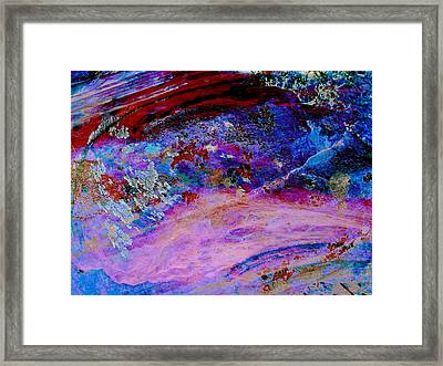Lichen Sarabande Framed Print by Stephanie Grant