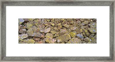 Lichens On Rocks At Yankee Boy Basin Framed Print by Panoramic Images