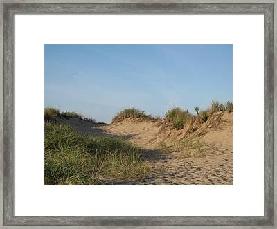 Lieutenant Island Dunes Framed Print