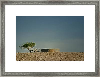 Life  Framed Print by A Rey