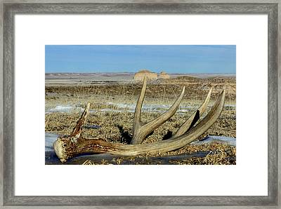 Life Above The Buttes Framed Print