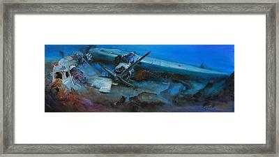 Life After The Last Flight Framed Print by Ottilia Zakany