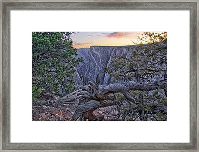 Life And Death At Painted Wall Framed Print