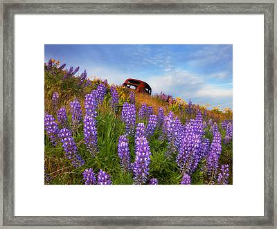 Life And Death Framed Print by Darren  White