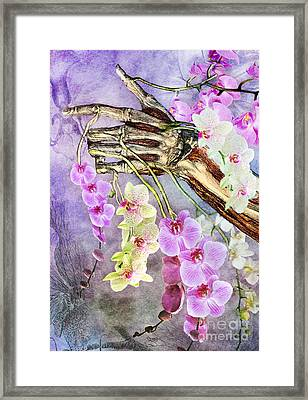 Life And Death Framed Print by Michael Volpicelli