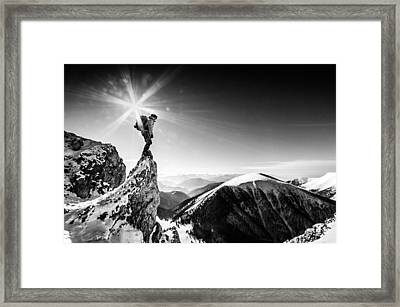 Life At The Top Framed Print