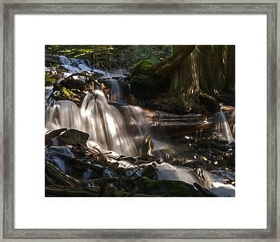 Life Begins To Flow Framed Print by Jordan Blackstone