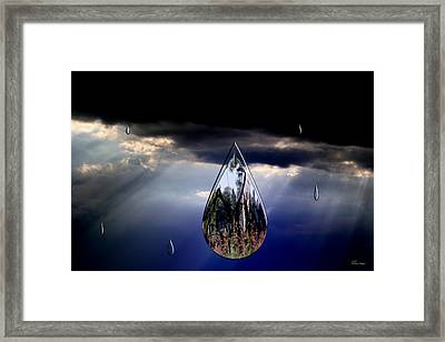Life Drop Framed Print by Andrea Lawrence