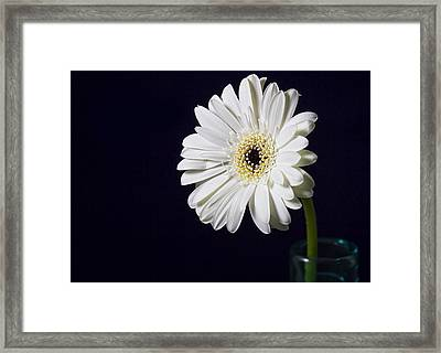 Life -  Face On Framed Print by Kim Andelkovic
