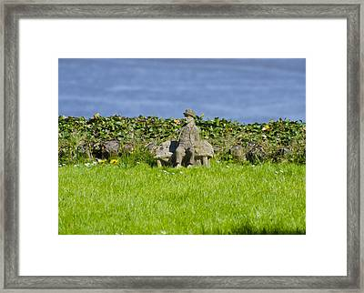 Life Goes On Framed Print by Bill Cannon