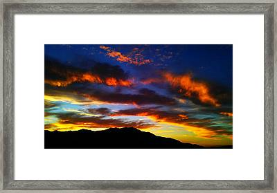 Framed Print featuring the photograph Life In The Desert by Chris Tarpening
