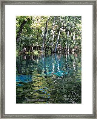 Life In The Water Framed Print