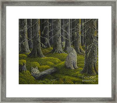 Life In The Woodland Framed Print
