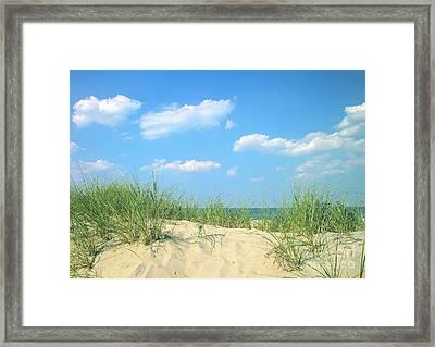 Life Is A Beach Framed Print by Diane Diederich