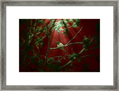 Life Is A Song Framed Print by Bonnie Bruno