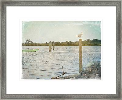 Life Is For Living Framed Print by Robin Dickinson