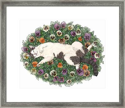 Life Is Just A Bed Of Pansies Framed Print
