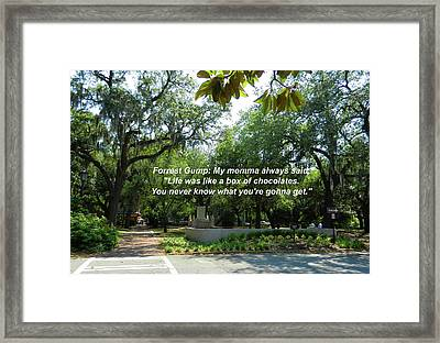 Life Is Like A Box Of Chocolates Framed Print