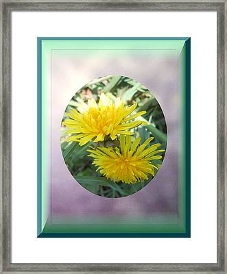 Life Is Made Up Of Dandelions Framed Print by Patricia Keller