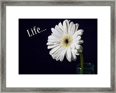 Life Framed Print by Kim Andelkovic