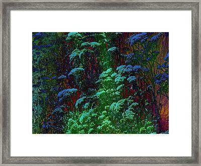 Life Framed Print by Lenore Senior