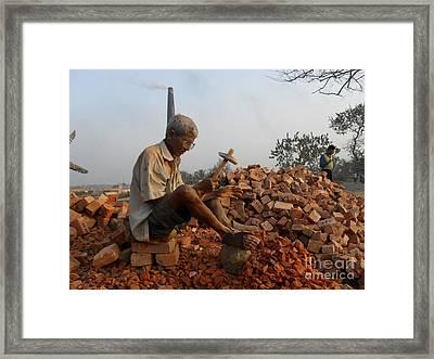 Life Like This Framed Print by Shah Aziz