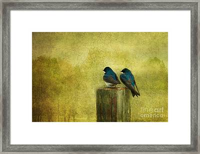 Life Long Friends Framed Print by Beve Brown-Clark Photography