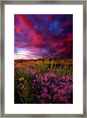 Life Love And Hope Framed Print by Phil Koch