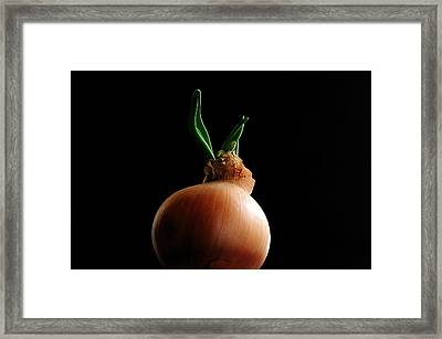 Framed Print featuring the photograph Life by Marwan Khoury