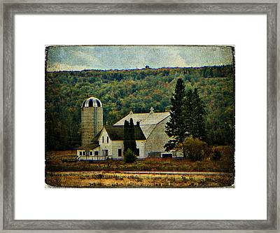 Life On A Farm  Framed Print by Dianne  Lacourciere